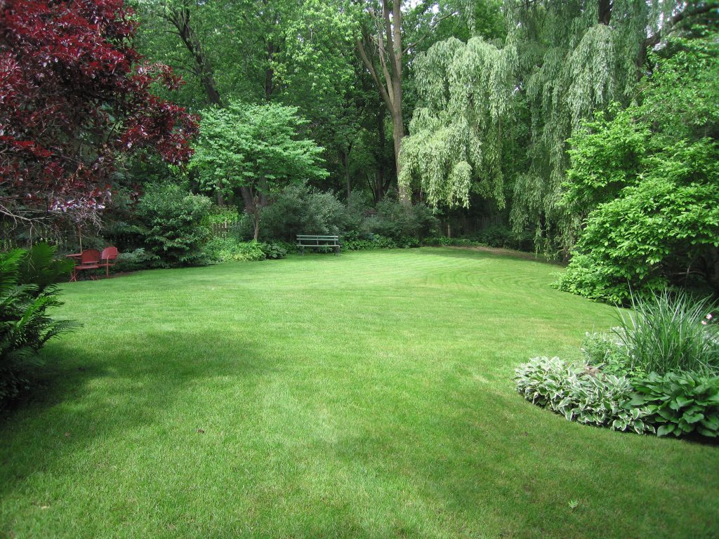 Don't Let The Draught Ruin Your Lush Lawn